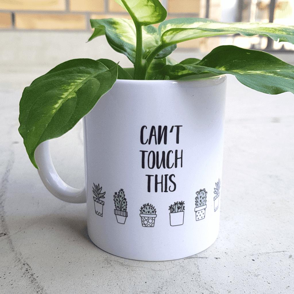 Wonderspot Kaktus Tasse